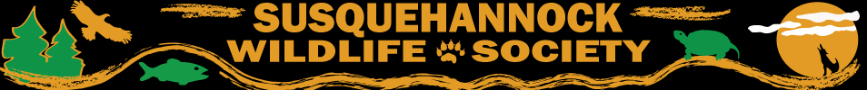 Dedicated to Protecting Local Wildlife in the Upper Chesapeake Bay and Surrounding Areas